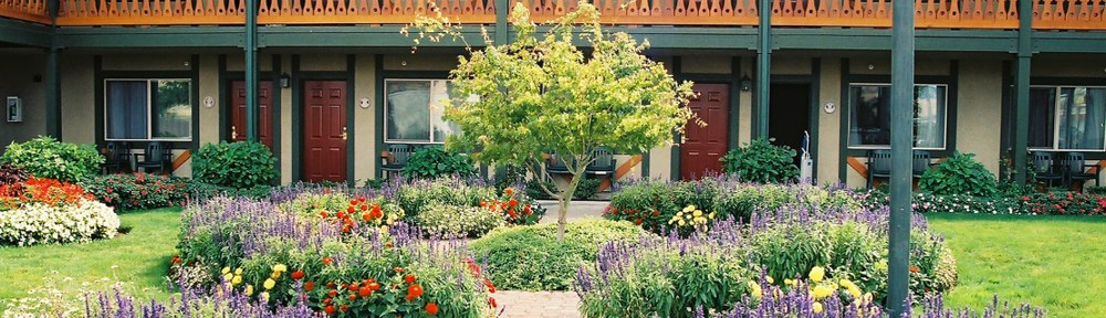 Photograph of a commercial landscape design by Naturescape Designs landscape designer