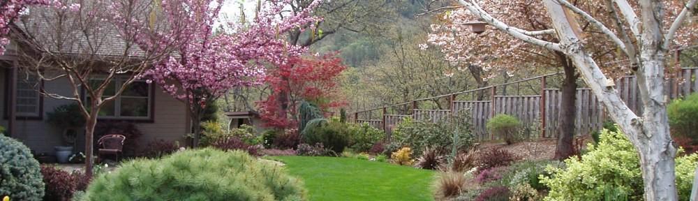 Photograph of Naturescape Designs landscape designer Show Garden