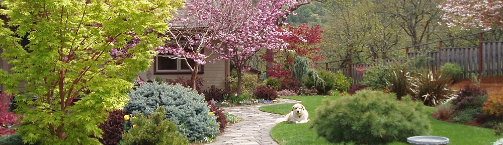 Photograph of Naturescape Designs show garden landscape design
