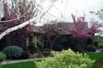 Photograph of Naturescape Designs show garden landscape design